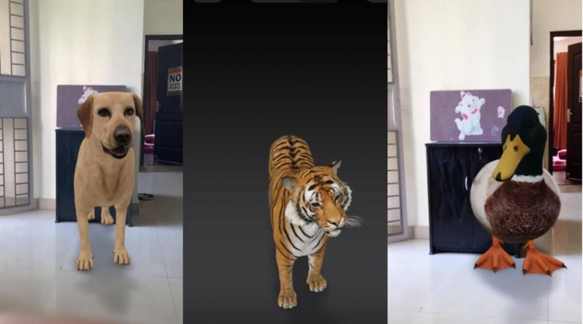 Xem động vật 3D bằng ứng dụng Google Animals 3D